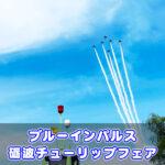 【ブルーインパルス富山】見どころ写真まとめin砺波チューリップフェア!