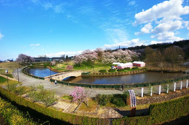 富山市の呉羽山公園・都市緑化植物園