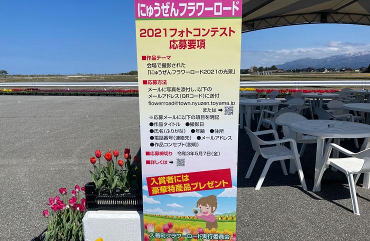 富山県入善町の「入善フラワーロード」のフォトコンテスト