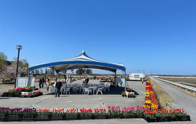 富山県入善町の「入善フラワーロード」のテント休憩所