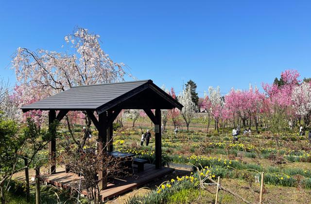 魚津市「花の森 天神山ガーデン」の休憩小屋
