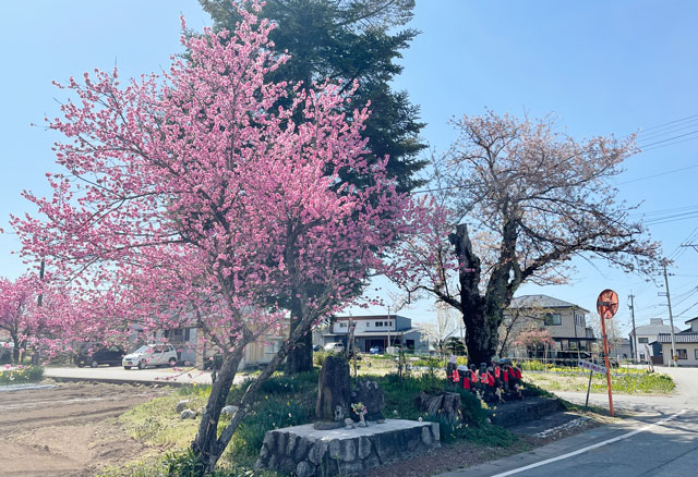 魚津市「花の森 天神山ガーデン」の入口にある御地蔵さん