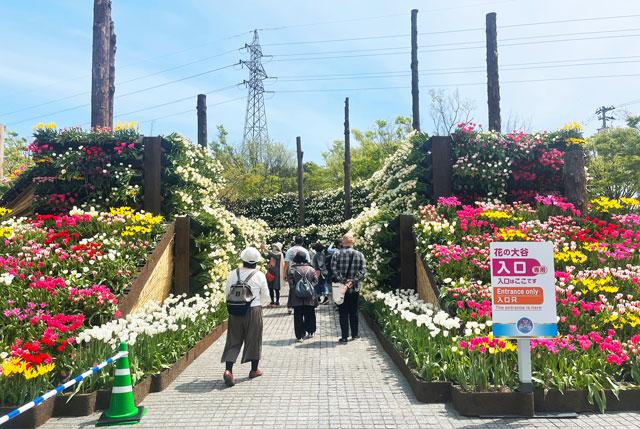 富山県砺波市「となみチューリップフェア」の花の大谷