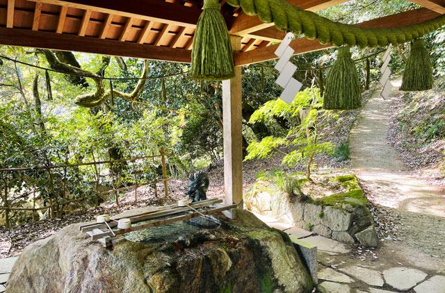 富山県氷見市ヤマフジの花で有名な「磯部神社」の手水