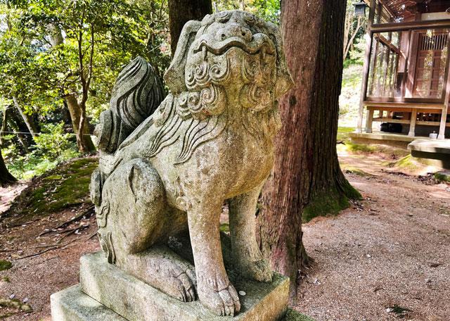 富山県氷見市ヤマフジの花で有名な「磯部神社」の狛犬2