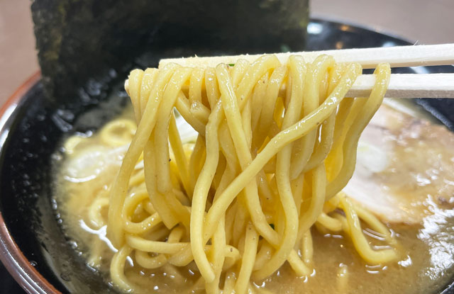 富山市五福のショッピングセンターアリス内にオープンした「とんこつ えびすこ」の麺