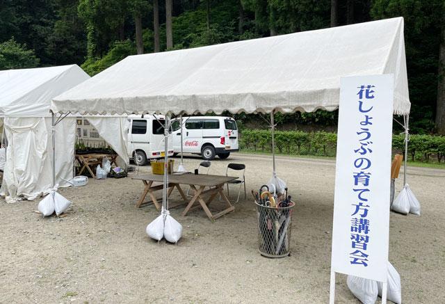 富山県砺波市の「頼成の森 花しょうぶ祭り」の花しょうぶの育て方のブース