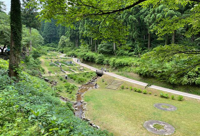 富山県砺波市の「頼成の森 花しょうぶ祭り」の上からの景色2