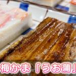 【うお蒲】梅かまの贅沢ギフトを食べてみた【感想レビュー】