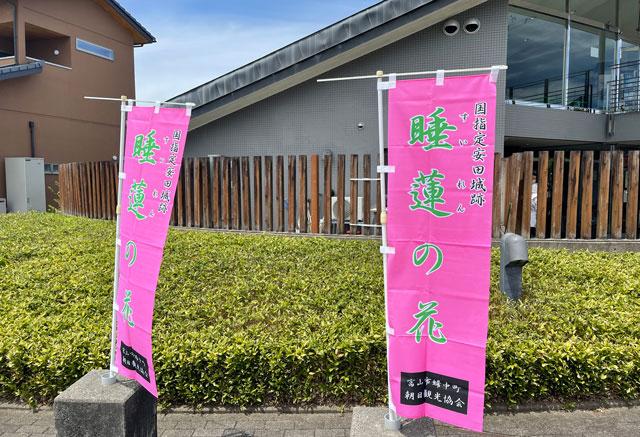 富山市婦中町の史跡安田城跡の水蓮の花ののぼり