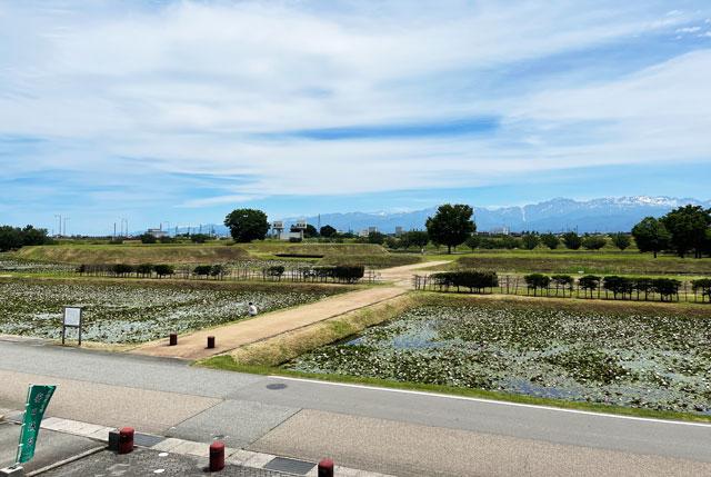 富山市婦中町の史跡安田城跡資料館の展望台からの眺め