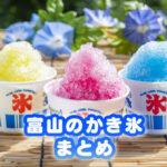 【富山かき氷まとめ】夏の定番スイーツ【映える・安い・贅沢・懐かしい】