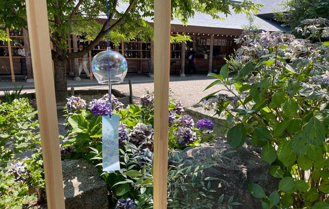 富山県射水市の櫛田神社の風鈴トンネルの横に1つだけある風鈴と紫陽花