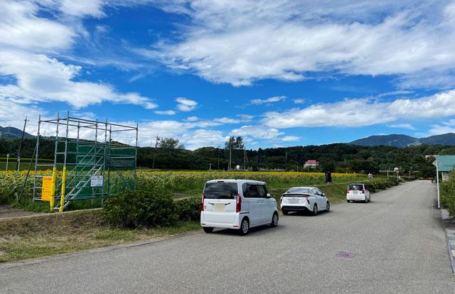 富山県南砺市桜ヶ池クアガーデンのひまわり畑の路上駐車