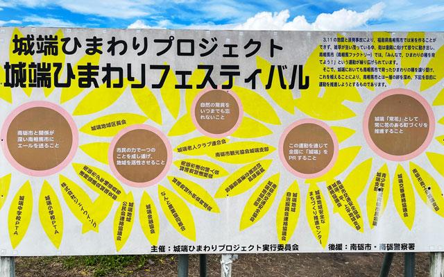 富山県南砺市桜ヶ池クアガーデンのひまわりプロジェクト
