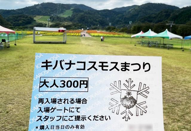 富山県南砺市イオックスサローザのキバナコスモス祭りの入場チケット