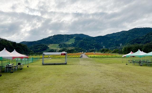 富山県南砺市イオックスサローザのキバナコスモス祭りの景色