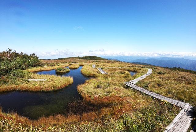 富山県八尾町の山「白木峰」